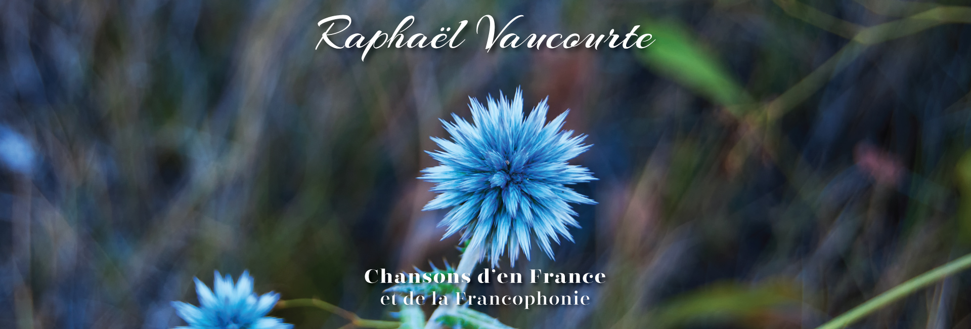 Raphaël Vaucourte (site officiel)