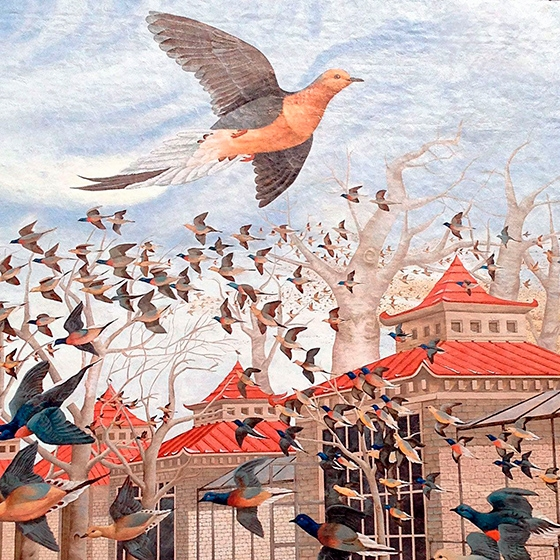Martha_The-last-carrier-pigeon_web